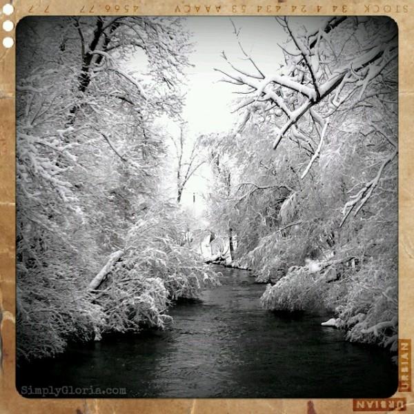 River in the Springtime