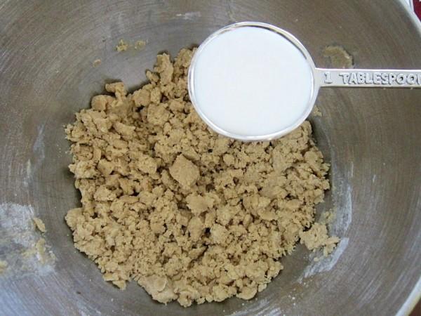 Cookie Dough Shake4