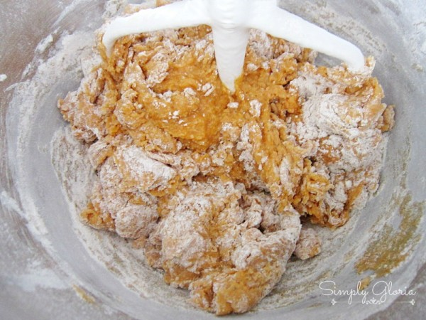 Pumpkin Chocolate Chip Cookies Ingredients4