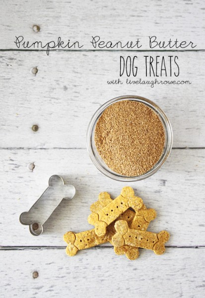 Pumpkin-Peanut-Butter-Dog-Treats-with-livelaughorwe.com_