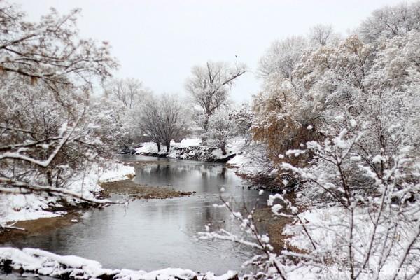 Lazy Sunday, Fresh Fallen Snow by SimplyGloria.com 3