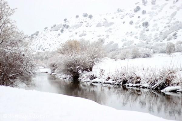 Lazy Sunday, Fresh Fallen Snow by SimplyGloria.com 6