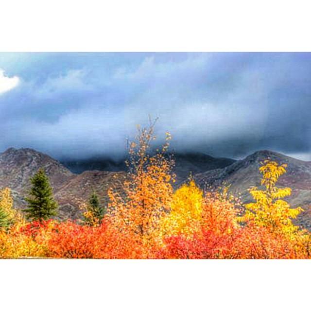 Autumn storm still lingering. ... ::::::::::::::::::::::::::::::::::::::::::