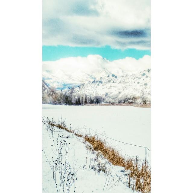 Fresh fallen morning snow. ... #Utah #WasatchBack #mountains #wowutah